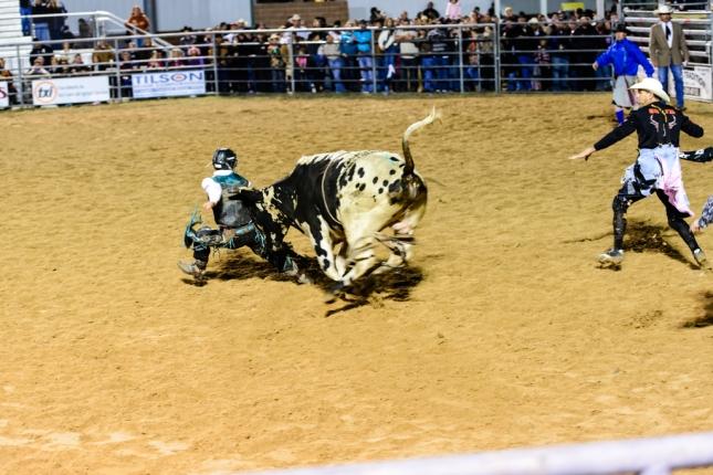 Bull Riding-1-28