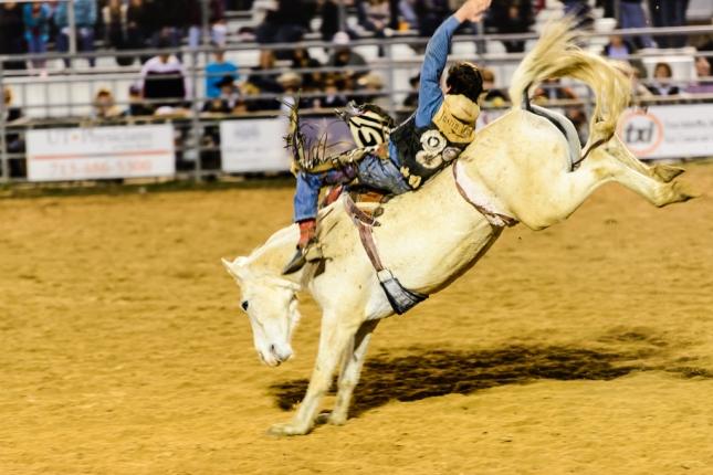Horse Riding-1-25
